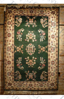 Meshed Green/Ivory (3'9x5'9)